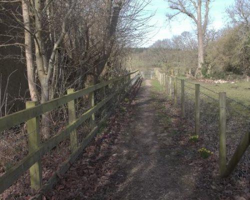 the-footpath-running